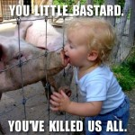 Swine Flu Source Discovered